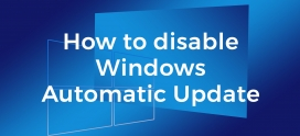 How to stop Automatic updates in RDP