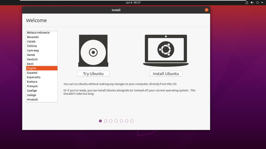 Start ubuntu Installation